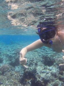 Certamente um dos lugares mais lindos para mergulhar: Vanuatu, Micronésia